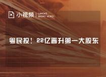 粤民投!22亿晋升第一大股东