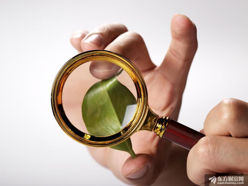 龙蟒佰利10年盈利逾百亿分红84亿 行业高景气主导产品年内三次提价