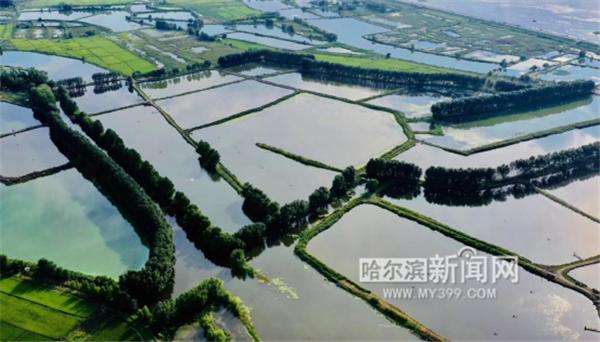 黑龙江哈东沿江湿地申报国际重要湿地