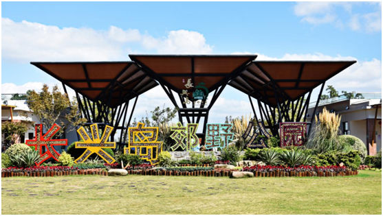 玉兰花开待客来  长兴岛郊野公园开启全面复工复产