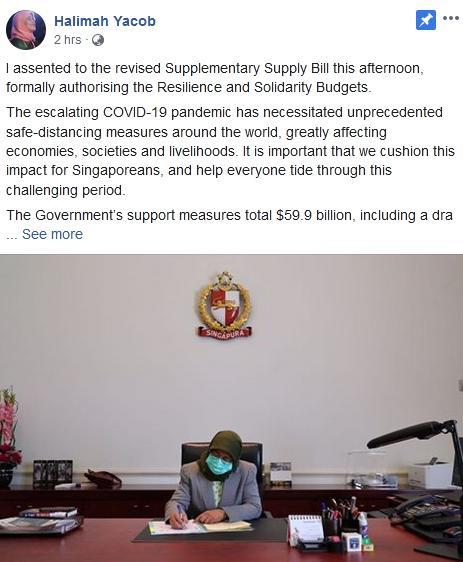 新加坡总统批准动用国家储备预算案 吁遵守阻断措施