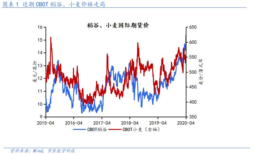 沈建光:中国增加粮食储备背后的思考