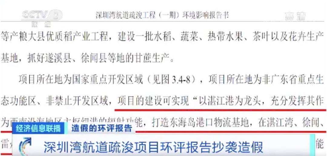 """《【沐鸣电脑版登录】惊现35次""""湛江"""" """"深圳湾""""环评报告造假处理结果来了!》"""