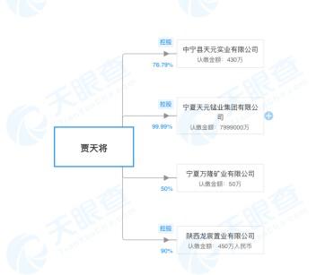2019年华融投资股权结构和贾天将对名下公司持股情况