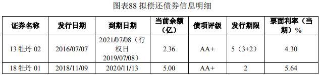 黑牡丹10亿元小公募公司债券已获上交所受理-中国网地产