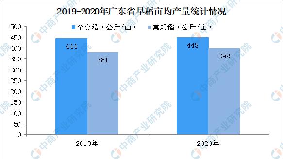 2020年7月广东省粮食产销现状分析及未来行情预测(附图表)