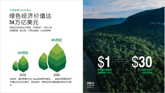 强强联合!TREELION Foundation与币安慈善共同搭建绿色数字流通平台