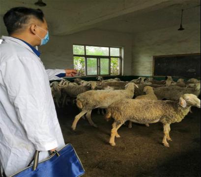 河南省平顶山石龙区科技扶贫坚持走绿色安全发展道路