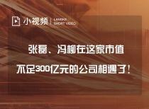 张磊、冯柳在这家市值不足300亿元的公司相遇了!