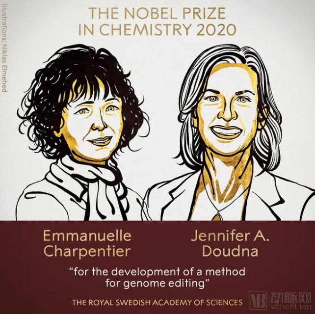 盘点CRISPR大神和他们的基因编辑企业