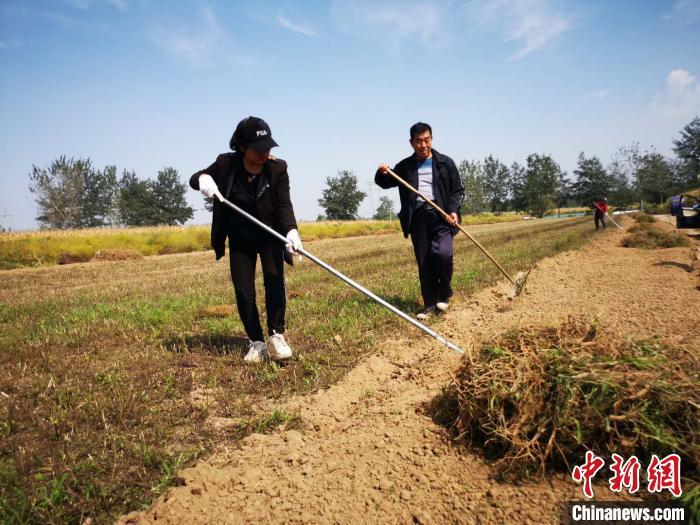 三年种植万亩中药材千年古镇村民有了增收新路径