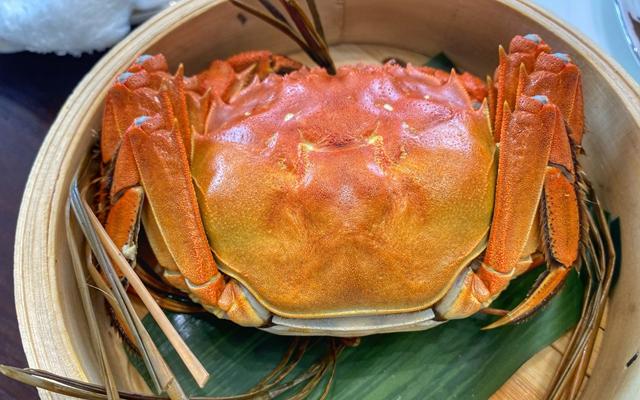 陈屿家9月上市的高等级大闸蟹。