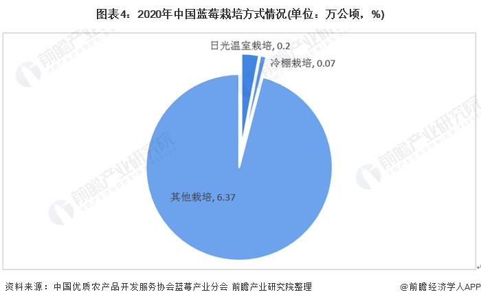圖表4:2020年中國藍莓栽培方式情況(單位:萬公頃,%)