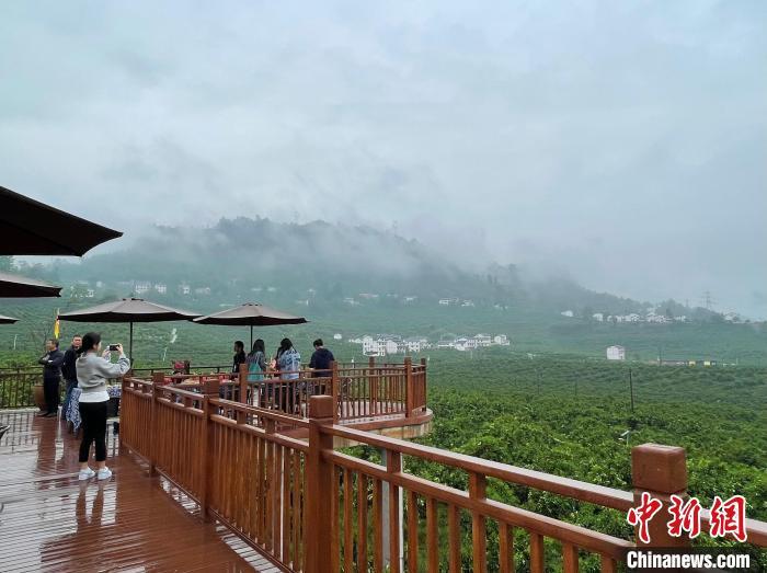 重庆万州:农旅融合绘新景 美丽乡村开启美丽经济