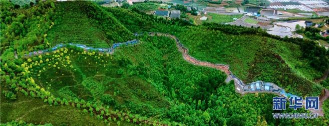 """重庆的3D立体画获得了""""世界上最长、面积最大""""的吉尼斯世界纪录"""