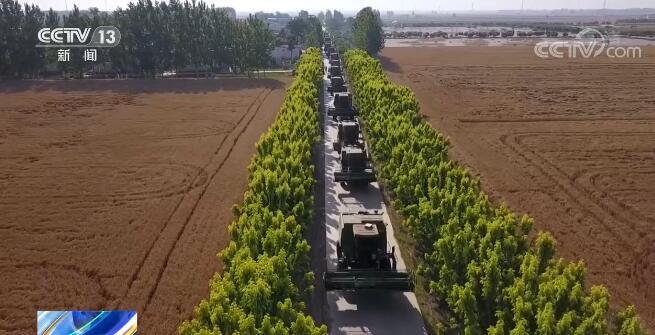 全国多地迎来夏粮丰收季,各地纷纷抢农机机械
