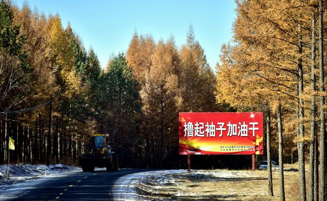 林有人造、责有人担 年底前中国将全面建立林长制