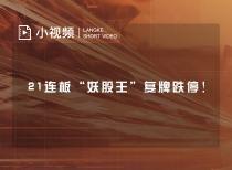 """21连板""""妖股王""""复牌跌停!"""