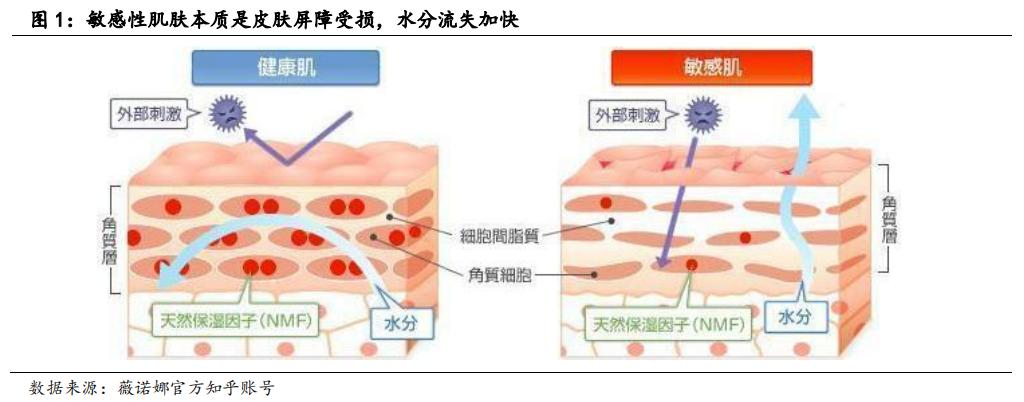 功能性护肤品行业:产品争夺核渠道