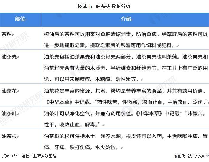 2021年中国茶油行业市场现状与贸易趋势分析 从中国迈向世界
