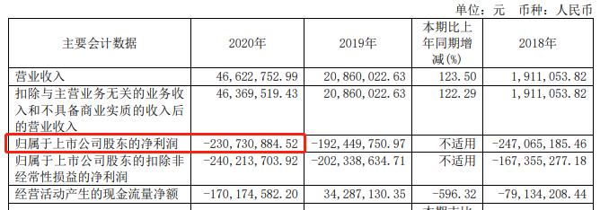 来源:2020年年报