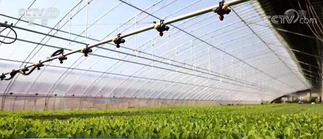 【人勤春来早 奋进正当时】各地春耕陆续展开 多种措施加强田间管理为夏季丰收打下基础