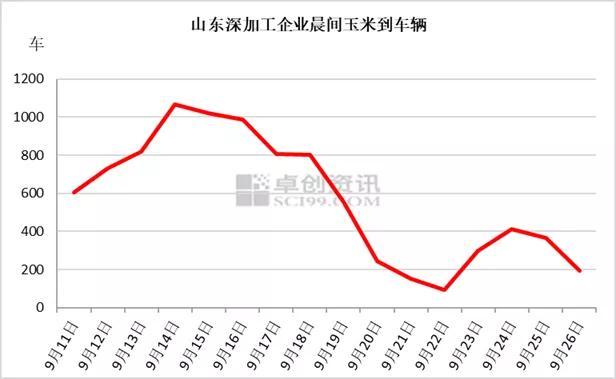 阴雨天气持续 华北新玉米上市延迟维持上涨趋势