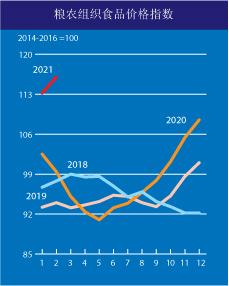 """国际粮价暴涨 会影响中国人的""""饭碗""""吗?"""