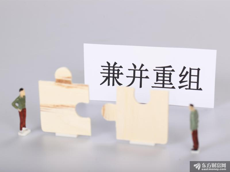 中共中央、国务院:积极稳妥推进浦东新区具备条件的国有企业混合所有制改革和整合重组